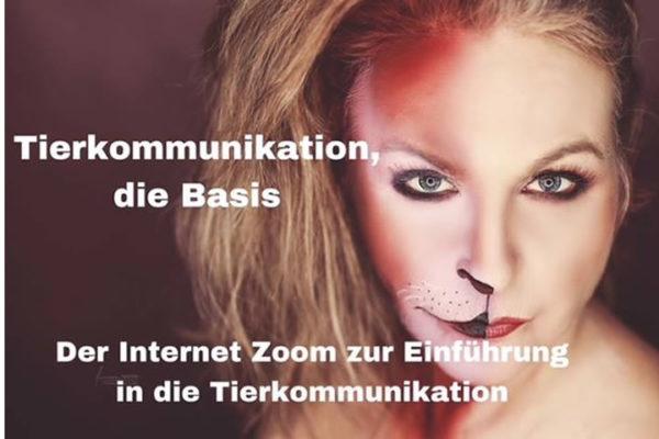 Einführung in die Tierkommunikation Workshop