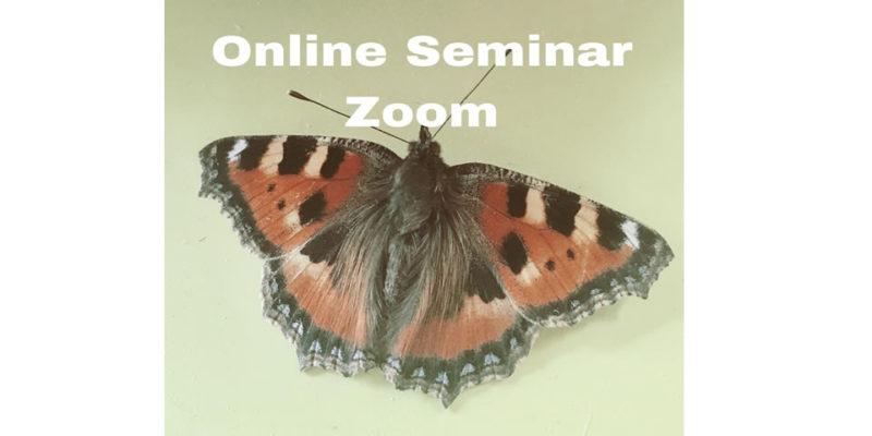 Online Seminar Zoom Uta Devone