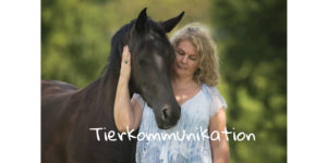 Basiskurs Tierkommunikation nach Peneope Smith