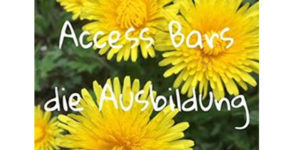 Der neue Access Bars Kurs, in Trier @ Praxis Seelenmission