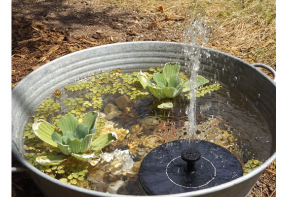 Brunnen Natur